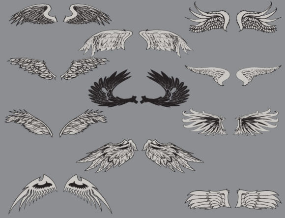 Wings vector pack 1 4