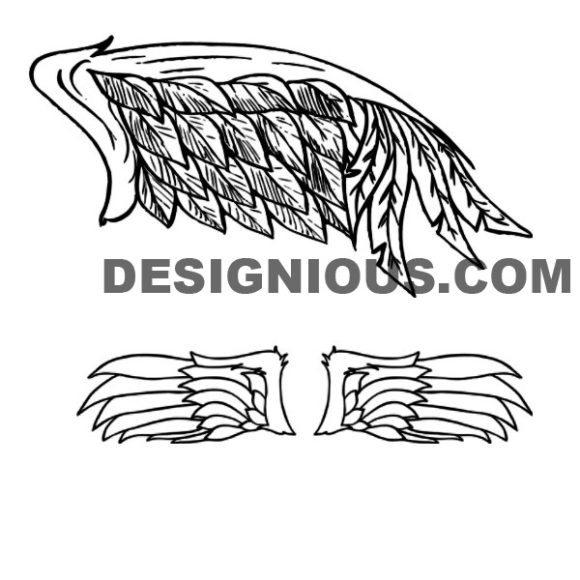 Wings brushes pack 2 6
