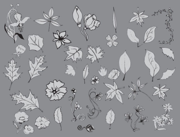 Floral vector pack 17 6