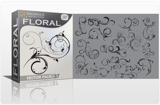 Floral vector pack 37 products floral 37