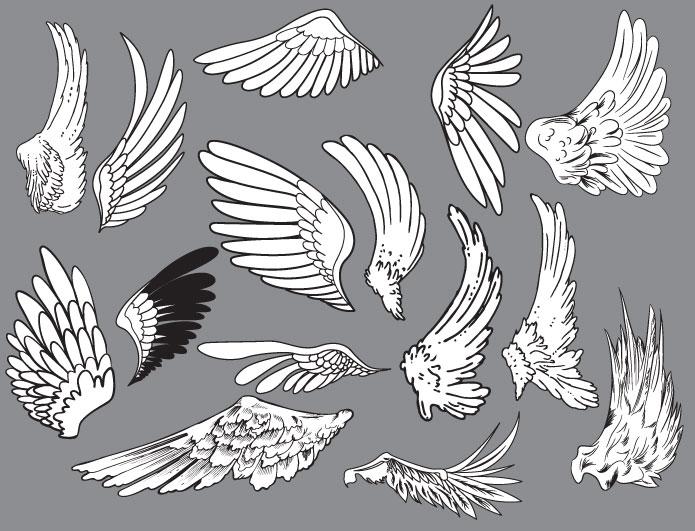 Wings vector pack 7 Wings vector