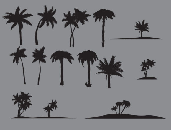 Palm trees vector pack products palm trees beach prewiev