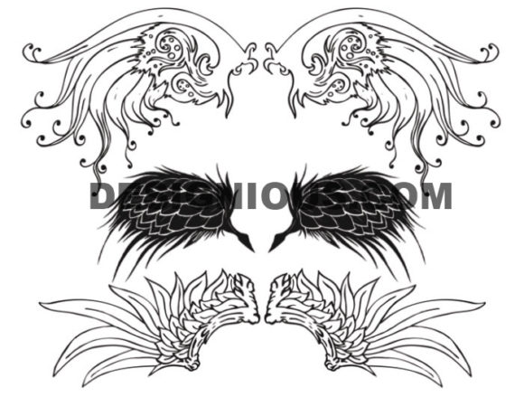 Wings brushes pack 5 6