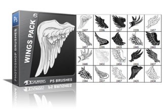 Wings brushes pack 6 Wings brushes [tag]