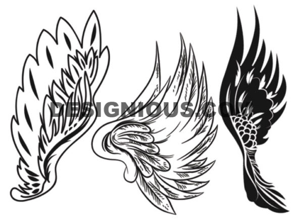 Wings brushes pack 7 6