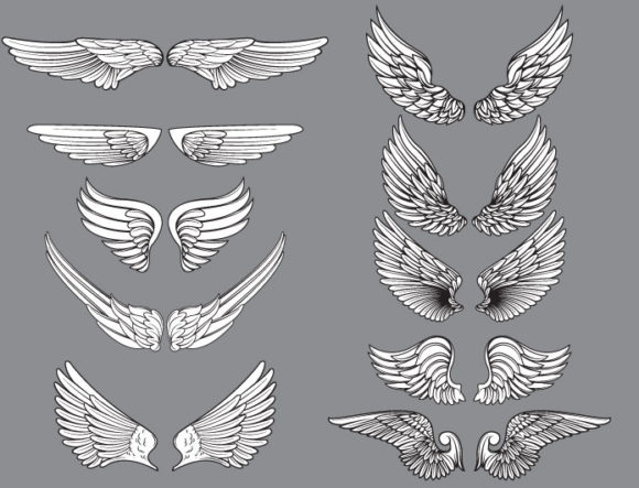 Wings vector pack 11 products angel wings 11