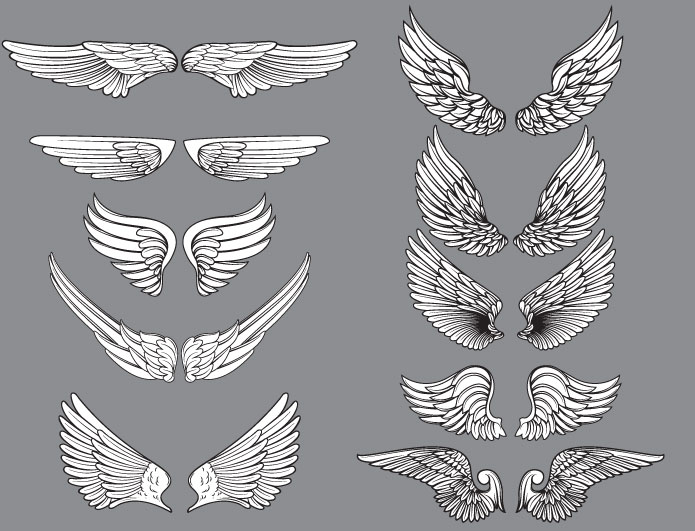 Wings vector pack 11 Wings vector