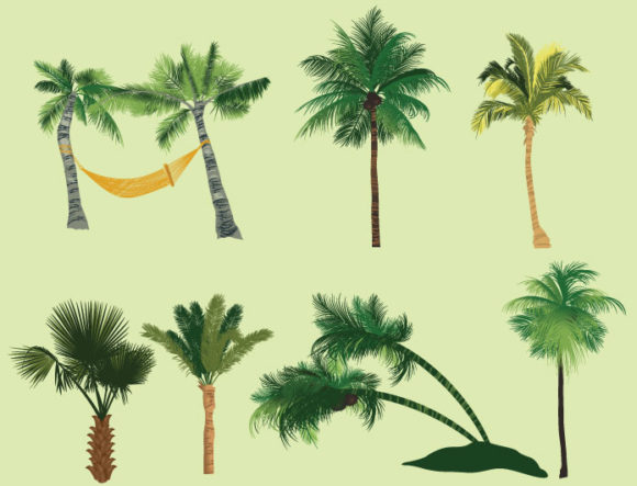 Palm trees vector pack 2 products tropical trees 2