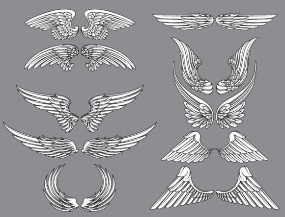Wings vector pack 12 products wings 12 1