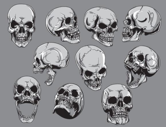 Skulls vector pack 19 Skulls skull