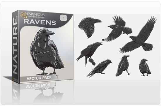 Ravens Vector Pack 1 Nature bird