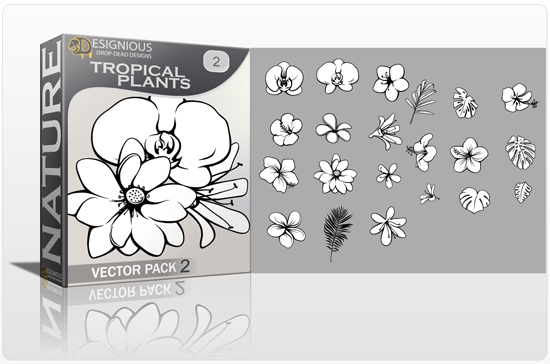 Tropical Plants Vector Pack 2 products designious tropical plants vector pack 2 preview 1 1
