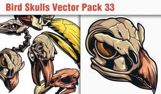 Skulls Vector Pack 33 Skulls [tag]