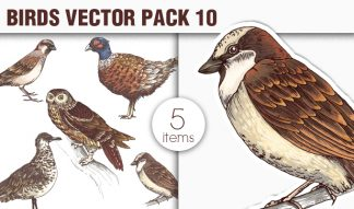 Birds Vector Pack 10 Nature [tag]