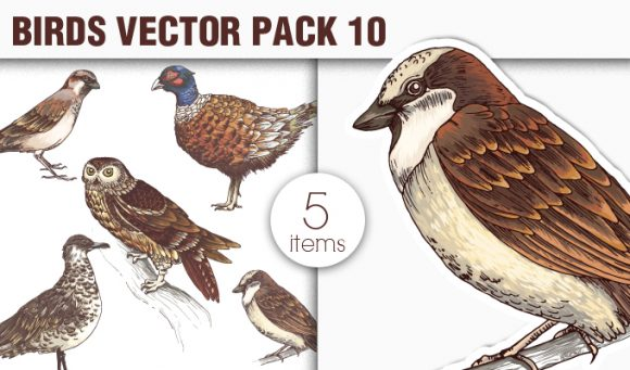 Birds Vector Pack 10 products designious vector birds 10 small