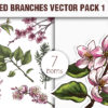 Blossomed Branches Vector Pack 1 3