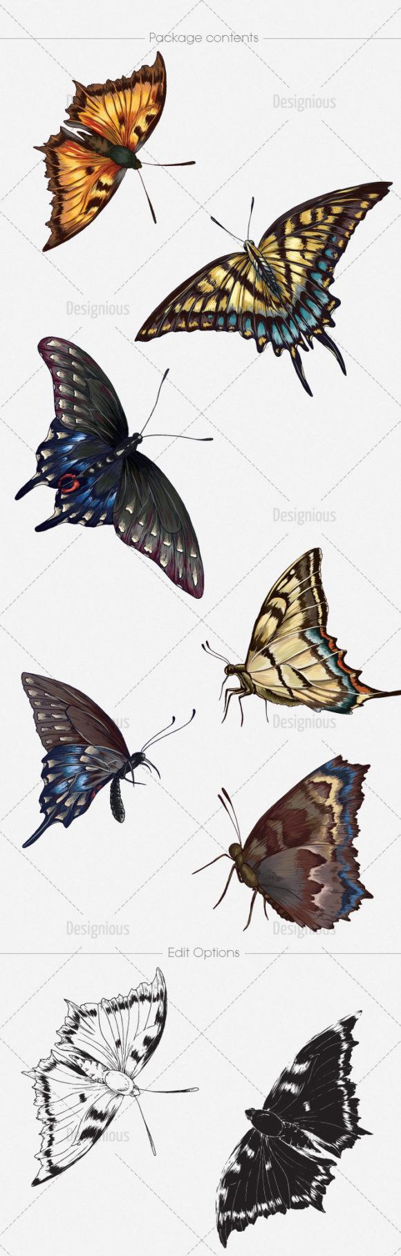 Butterflies Vector Pack 5 6