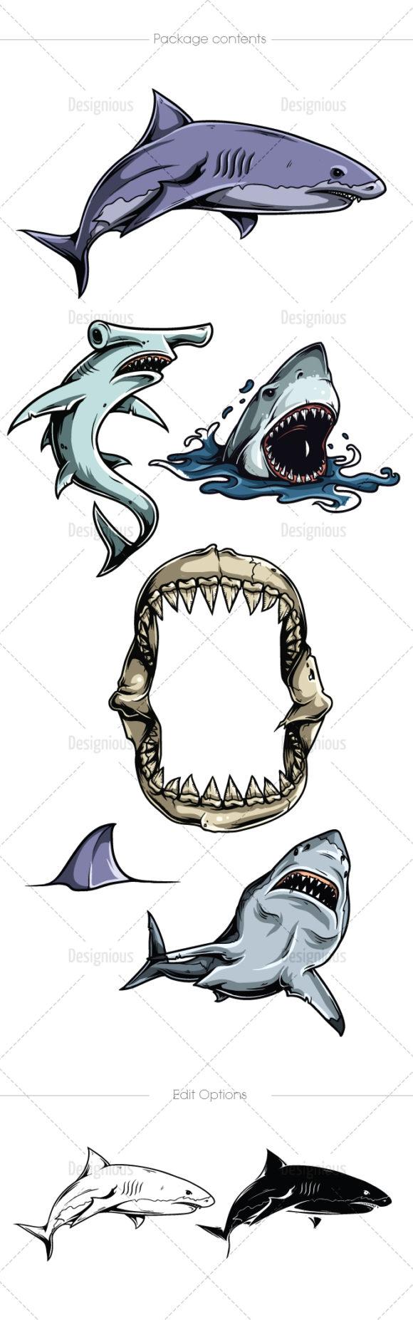 Sharks Vector Pack 1 4
