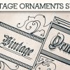 Vintage Ornaments Vector Pack 6 products designious vintage ornaments 7 small
