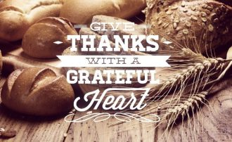 Thanksgiving typographic elements Freebies label