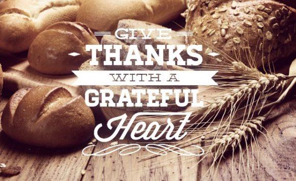 Thanksgiving typographic elements Freebies label