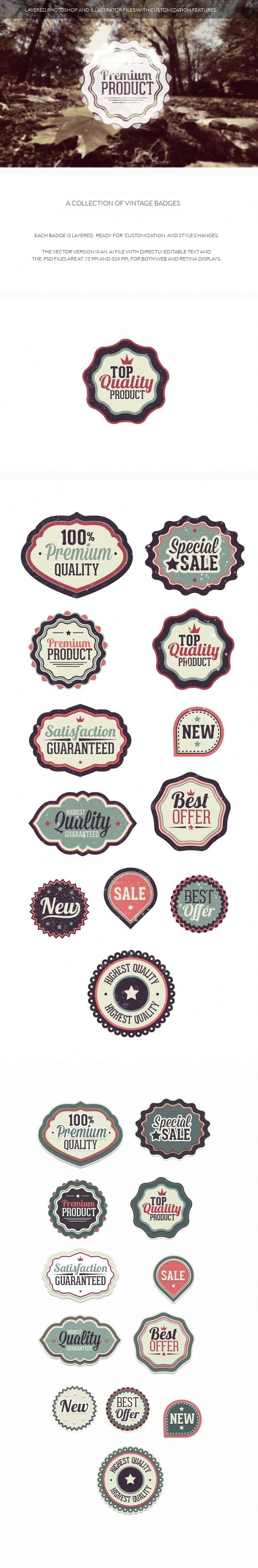 Vintage badges set 1 6