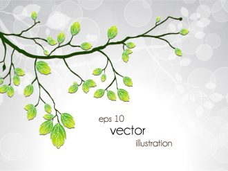 Vector Green Branch With Circles Vector Illustrations floral