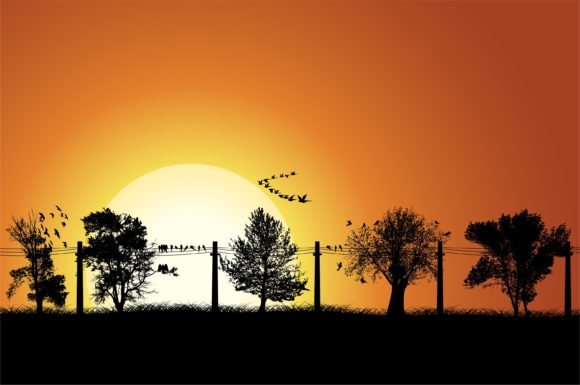 Vector Summer Background With Trees And Birds 1