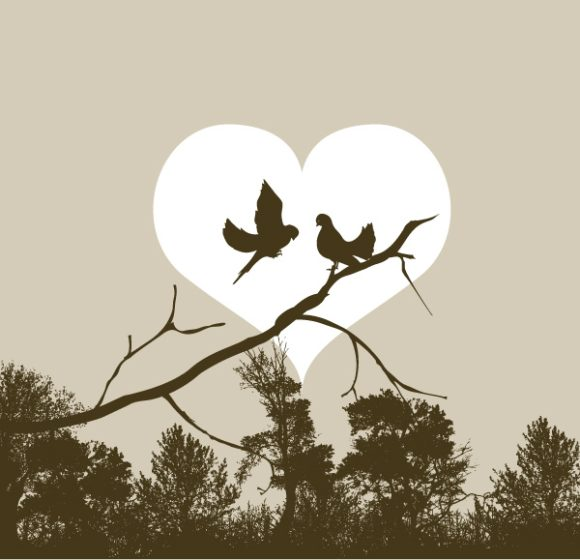 Birds Vector: Love Birds Vector Illustration 5
