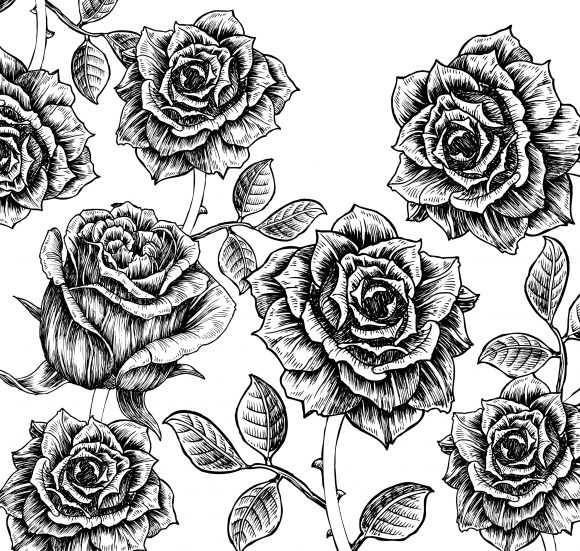 Brilliant Vector Vector Graphic: Vector Graphic Floral Background With Roses 09 24 2010 60
