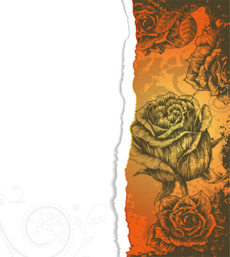 Vector Torn Cardboard With Roses Vector Illustrations old