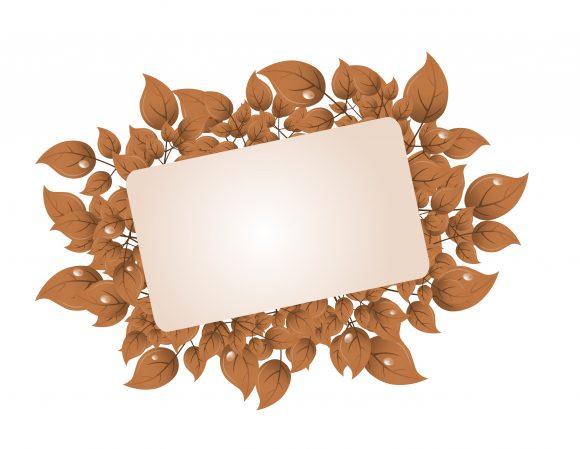 Amazing Frame Vector Graphic: Grunge Floral Frame Vector Graphic Illustration 5