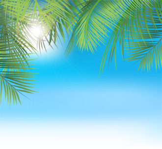 Vector Summer Background With Palm Leaves Vector Illustrations palm