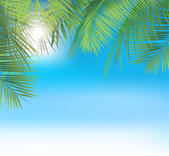 Vector Summer Background With Palm Leaves 10 02 2011 55