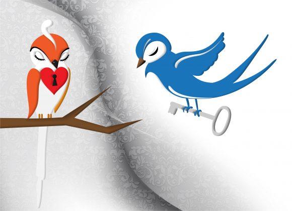 Illustration Vector Artwork: Love Birds Vector Artwork Illustration 5