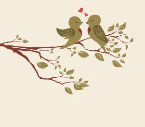Vector Love Birds On Branch Vector Illustrations floral