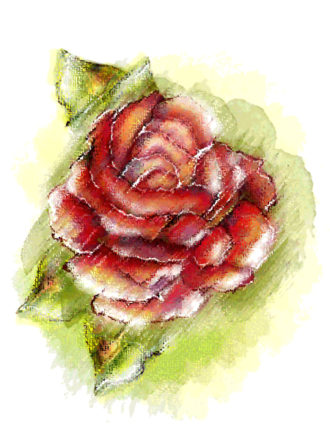 Colorful Floral Background Vector Illustration Vector Illustrations old