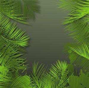 Palm Leaves Background Vector Illustration Vector Illustrations palm