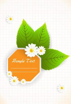 Vector Spring Floral Frame Vector Illustrations floral