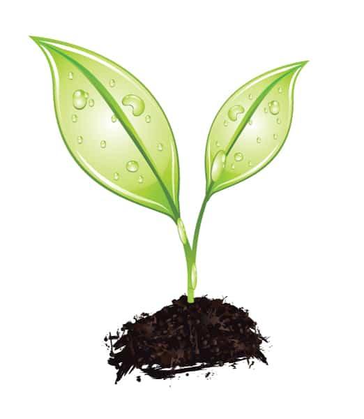 Green Vector Artwork: Vector Artwork Green Concept 2010 02 7 1012
