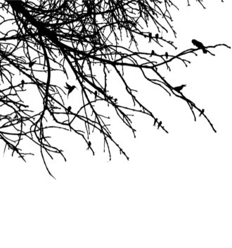 Vector Abstract Illustration With Lots Of Birds Vector Illustrations tree