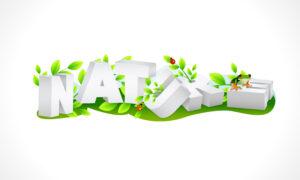 Nature 3d Text Vector Illustration Vector Illustrations floral