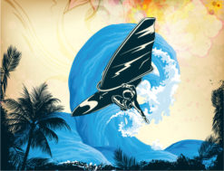 Vector Summer Background With Wind Surfer Vector Illustrations palm