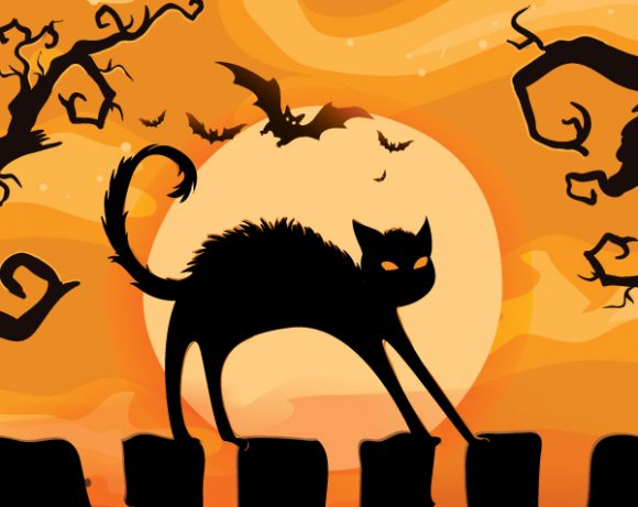 Background Vector Background Halloween Background With Cat Vector Illustration 24 8 2011 110