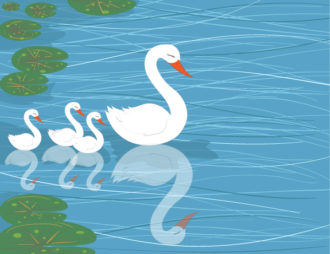 Swans On Water Vector Illustration Vector Illustrations floral