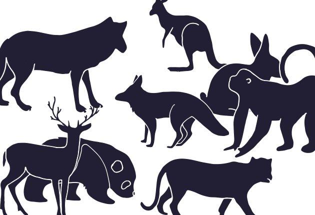 Wild Animals Geometric Vector Set 2 animals geometric vector set 2