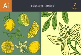 Engraved Lemons Vector Set 1 Vector packs lemon