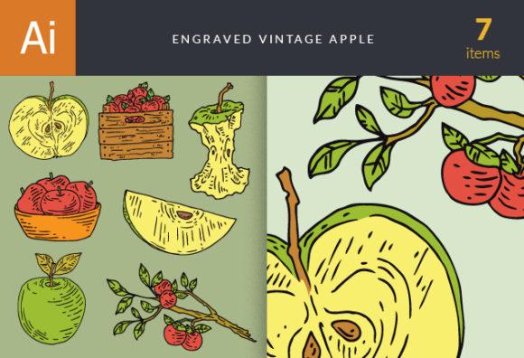 Engraved Vintage Apple Vector Set 1 designtnt engraved vintage apple vector set 1 vector small