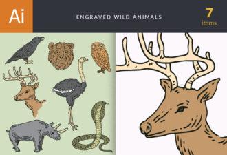 Engraved Wild Animals Vector Set 1 Vector packs bird