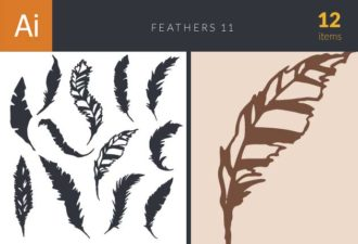 Feathers Vector Set 11 Vector packs feather